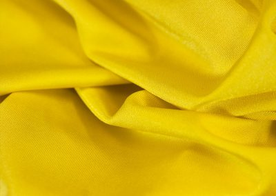 Lemon 547