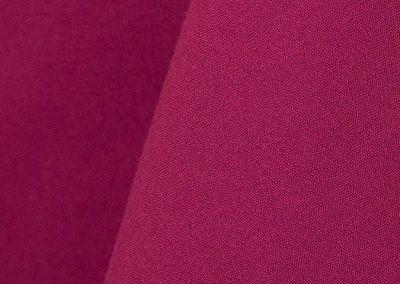 Raspberry 314